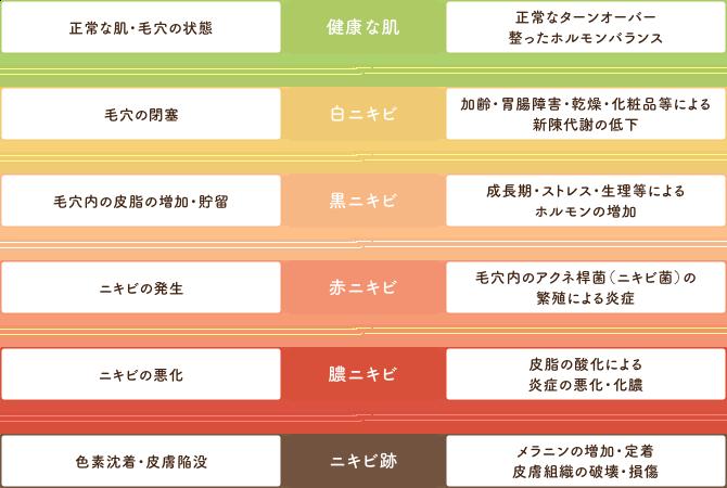 ニキビ・ニキビ跡の進行段階